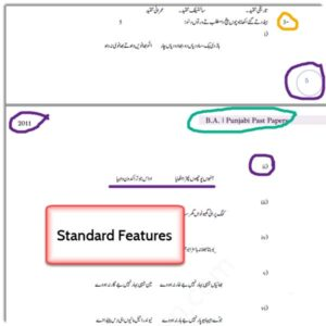 Professional Features - BA Punjabi Past Papers for PU